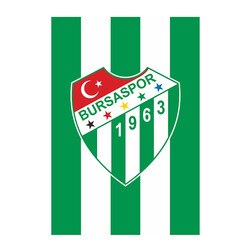 BURSASTORE - Bayrak Çubuklu Logo (100x150)