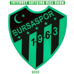 Bursaspor Fosforlu Logo (20x19) - Thumbnail