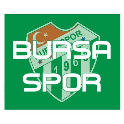 Sticker Bursaspor (11,5x9,5)