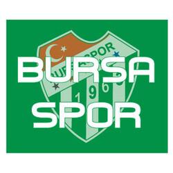 BURSASTORE - Sticker Bursaspor (11,5x9,5)