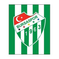 - Sticker Çubuklu Logo (11,5x9,5)