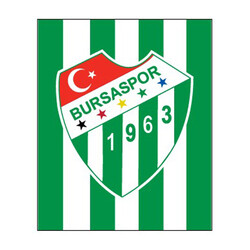 BURSASTORE - Sticker Çubuklu Logo (11,5x9,5)