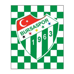 BURSASTORE - Sticker Damalı Logo (11,5x9,5)