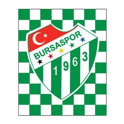 Sticker Damalı Logo (11,5x9,5)