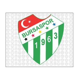 BURSASTORE - Sticker Logo (10x8)