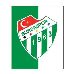BURSASTORE - Sticker Parçalı Logo (11,5x9,5)
